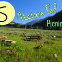 5 Healthy Nature Fed Picnic Recipes