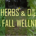 5 Herbs and Essential Oils for Fall Wellness
